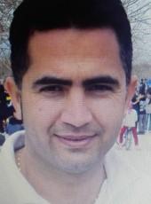 amirhossin, 34, Iran, Tehran