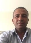 tariq, 55, Bethlehem