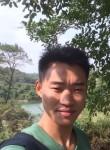傻乎乎的哥, 28  , Shiqi
