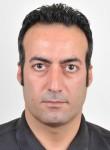 NikNam, 40  , Shiraz