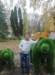 Andrey, 33  , Akhtubinsk