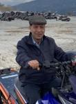 sam jaber, 65  , Chicago