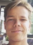 Aleksis, 24, Panevezys