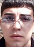 Abo, 25  , Yerevan