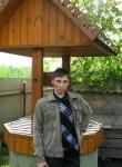 Sergey, 39, Zheleznogorsk (Kursk)