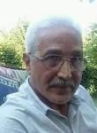 Ali, 50  , Sidi Khaled