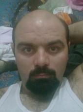 dash, 30, Iran, Qom
