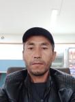 Mansurbek, 38  , Novosibirsk