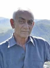 Vladimir, 64, Russia, Aleysk