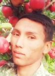 Rustam, 29, Tashkent