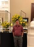 Ngọc Bảo, 50  , Ho Chi Minh City