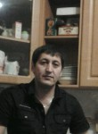 shahzodsabr