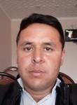 Oybek, 31  , Galaosiyo