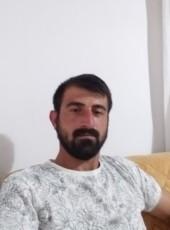 Ibrahim, 31, Turkey, Ankara