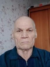Viktor, 78, Russia, Revda