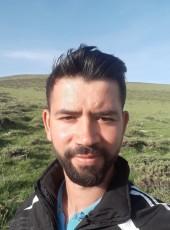 Arif, 28, Turkey, Ankara