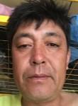 孟献武, 45  , Shijiazhuang
