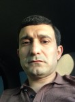 elmir  dzhafarov, 36  , Moscow