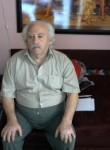 roman , 73, Beersheba