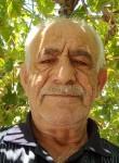 خليل هور, 54  , Jerusalem