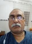 tamanrasseteho, 48  , Oran