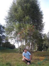 Andrey, 35, Russia, Zelenograd