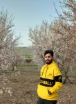 Mehdi, 31  , Tehran