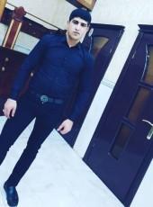 BAYRAM PASA, 28, Azerbaijan, Baku