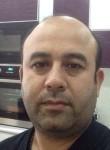Alov, 43  , Moscow