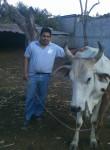 Alfredo sanche, 43  , Guatemala City