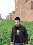 احمد الشرقاوي, 38  , Al Jizah