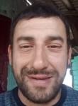 biltaai, 61  , Murmansk