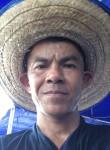 punya pengkalo, 47  , Chiang Mai