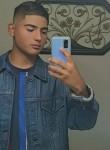 Vicente, 19  , Ontario
