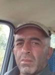 mert jıgola, 39  , Sarioglan
