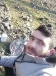 Zerdabil, 25, Baku