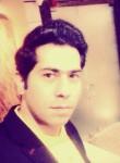 hamidmehryad729