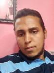 احمد, 52  , Alexandria