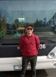 Roman, 34  , Hunedoara