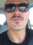 Maicol, 40 лет, Lonigo