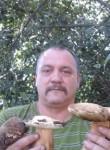 viktor, 61  , Perevalsk
