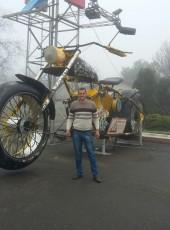 Tolik, 35, Ukraine, Kamenskoe