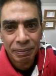 Hima, 49  , Shibin al Kawm