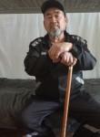 Yuldash , 65  , Ufa