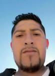 bladimir, 35  , Iquique