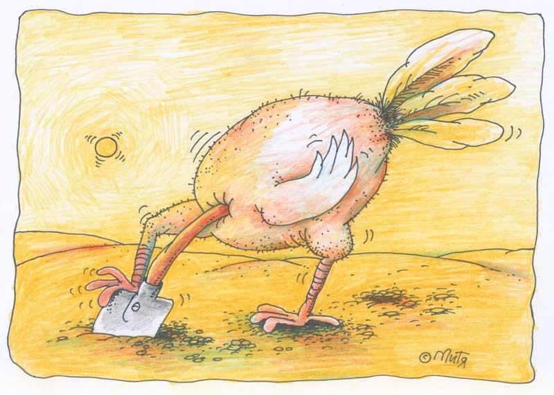Рисунок страуса прикольный, своими руками день