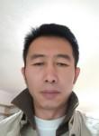 niko, 51  , Dalian