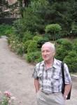 Aleksandr, 68  , Ramenskoye