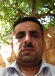 Arzu, 34  , Lankaran