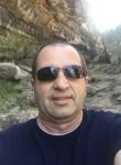 Sam, 50  , Sydney